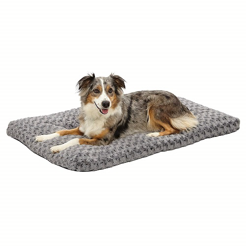 Indoor Dog Bed